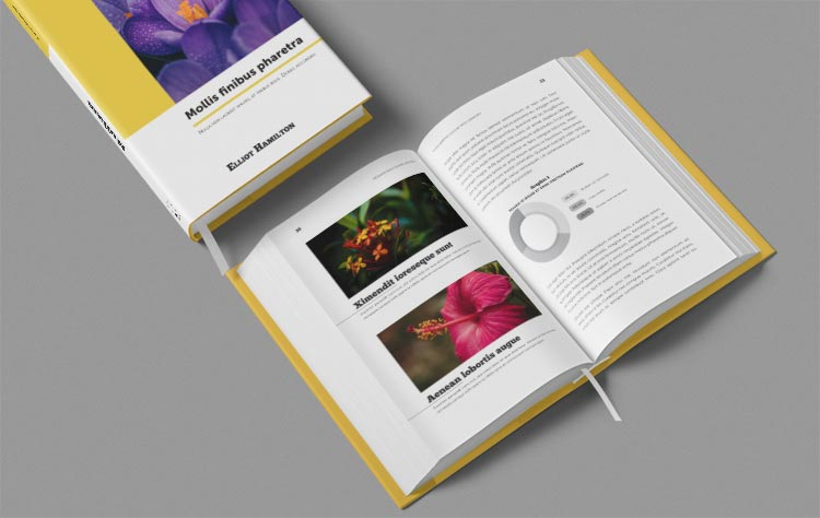 Book Template | Layout Template + Cover Template